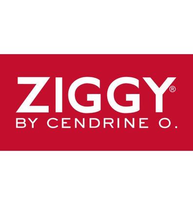 Obrázek pro výrobce ZIGGY