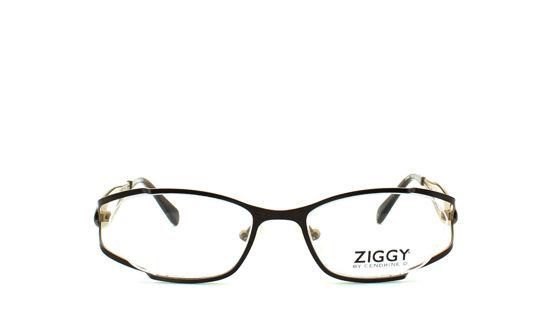 Obrázek ZIGGY 1275 1