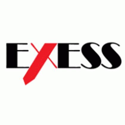 Obrázek pro výrobce EXESS